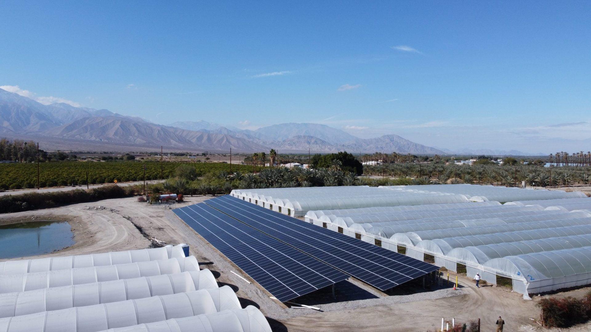 2-Long - Long Life Farms Agriclutural Solar - Thermal, CA