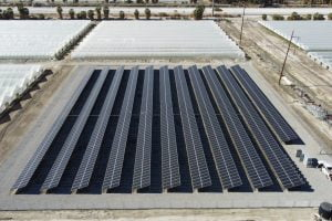 Grower 897 kW Thermal,CA